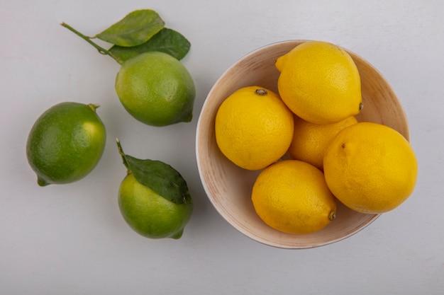 Limoni vista dall'alto in una ciotola con limette su sfondo bianco