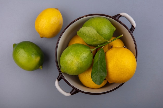 Limoni di vista dall'alto con limette in una casseruola su sfondo grigio