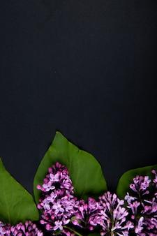 Vista dall'alto di fiori lilla isolato su sfondo nero con spazio di copia