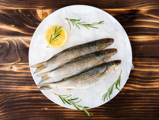 Top view mackerels on a plate with ice