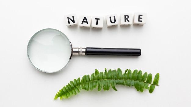 上面図拡大鏡と植物