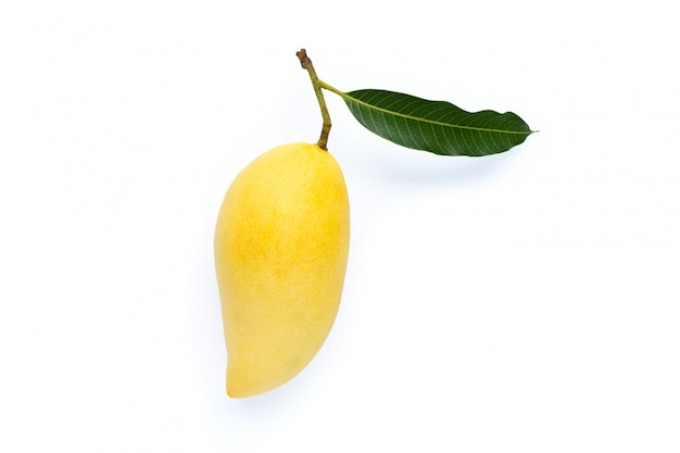 Top view of mango, tropical fruit  juicy and sweet.