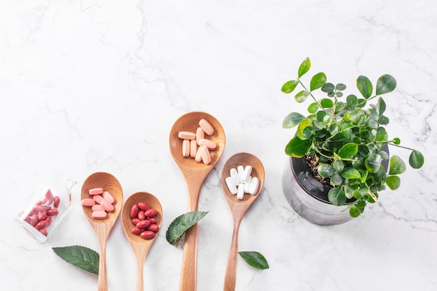 Top view of many medical tablets on wooden spoons with a green houseplant