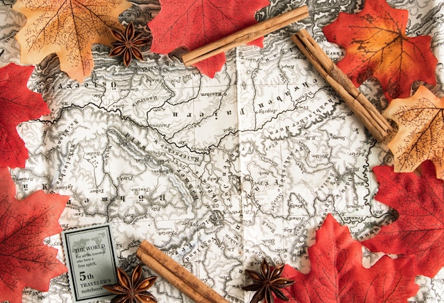 Top view map surrounded by autumn leave