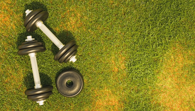 Top view of a metal gym dumbbells on grass