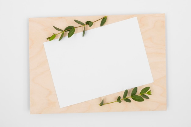 Top view minimal composition with white cards and leaves