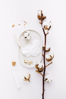 Top view of moisturizing cream and cotton twig on white background