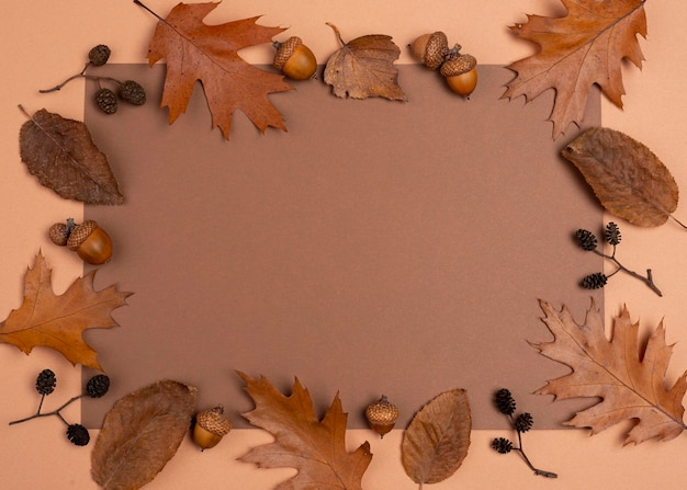 Top view of monochromatic selection of leaves frame