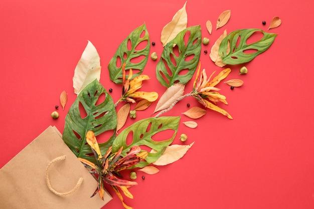 Vista dall'alto di foglie autunnali multicolori e sacchetto di carta