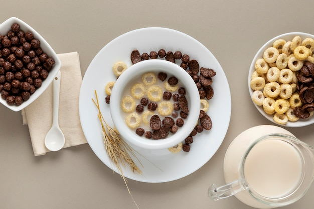 Vista dall'alto di più cereali per la colazione nella ciotola con il latte