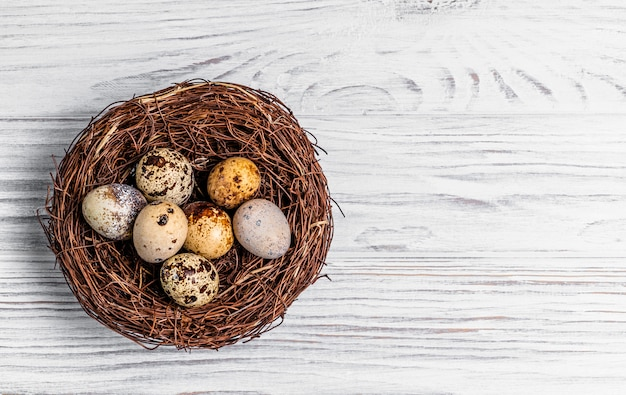 Top view of a nest from twigs with quail eggs on the wooden background.