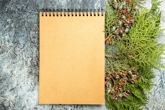 Top view notebook pine branch on grey background