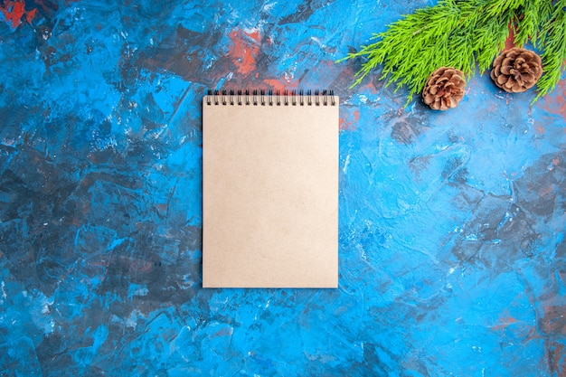 Top view a notebook pine tree branch and cones on blue-red background