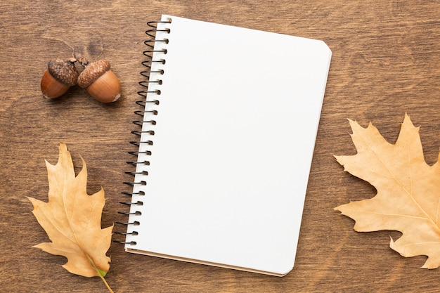 Top view of notebook with autumn leaves and acorns