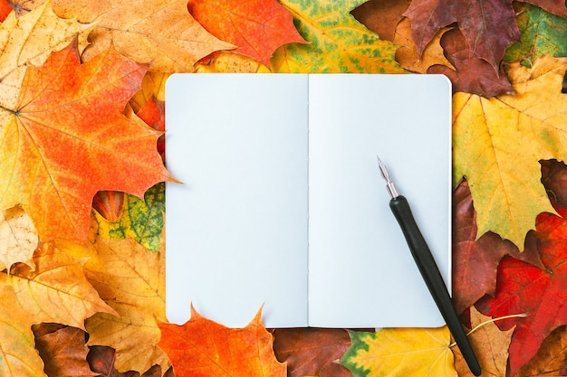 Top view of a notebook with autumn leaves and ink pen. colorful maple leaves and blank pages of diary book. autumnal mockup, copy space, top view, education concept. natural autumn leaves background.