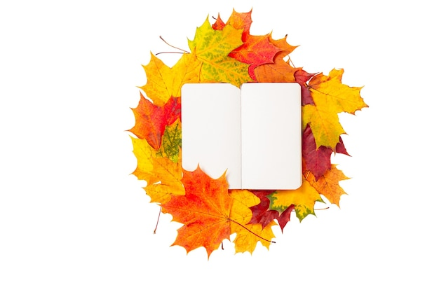 Top view of a notebook with autumn leaves isolated on white background. colorful maple leaves and blank pages of diary book. autumn mockup, copy space, education concept