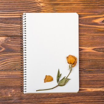 Top view notebook with dry flower on top