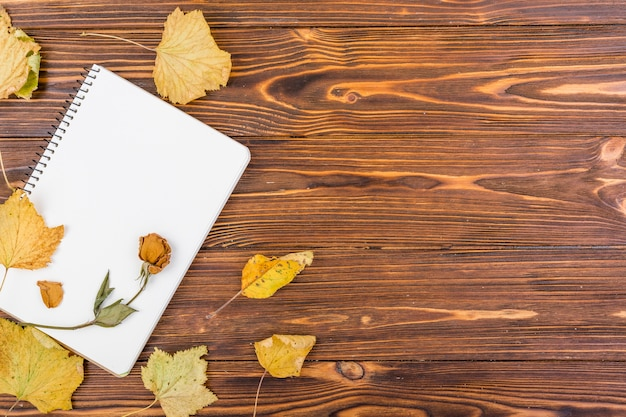 Top view notebook with flower and autumn leaves