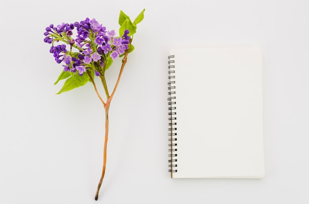 Top view notebook with flower