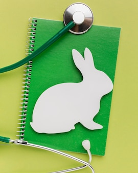 Top view of notebook with paper bunny and stethoscope for animal day