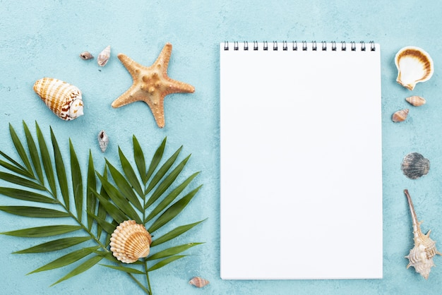 Top view notebook with shells beside