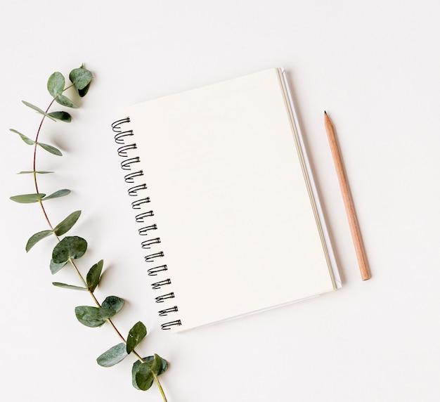 緑の葉の概念とトップビューメモ帳