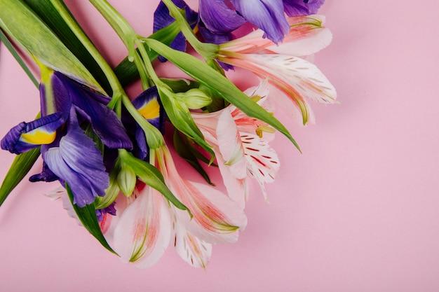 Вид сверху на букет из темно-фиолетовых и розовых цветов ириса и альстромерии на розовом фоне