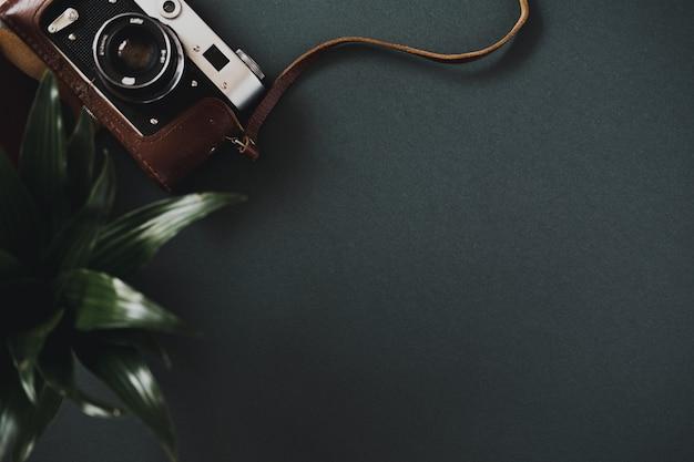 케이스에있는 평평한 필름 카메라의 상위 뷰는 냄비에있는 식물 옆에있는 검은 색 테이블에 놓여 있습니다.
