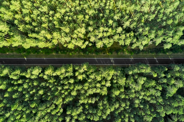 Вид сверху на шоссе посреди леса