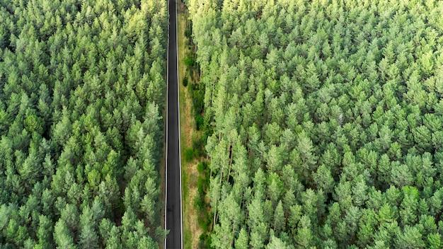 Вид сверху шоссе дорога в середине леса