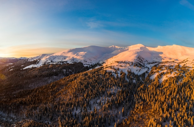 美しいピンクの冬の夕日に厚いモミの木と丘のある山の冬の森の魔法の景色の平面図。北欧の美しさのコンセプト。コピースペース