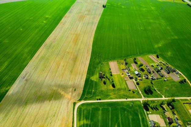 Вид сверху на засеянное зеленое поле и небольшую деревню в беларуси. сельскохозяйственные поля в деревне. весенний сев в небольшой деревне.