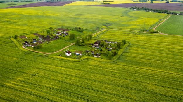 ベラルーシの播種された緑の野原と小さな村の平面図。村の農地。
