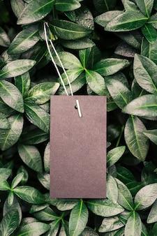 Вид сверху на квадратную рамку креативного макета из тропических растений и листьев барвинка с черным ...