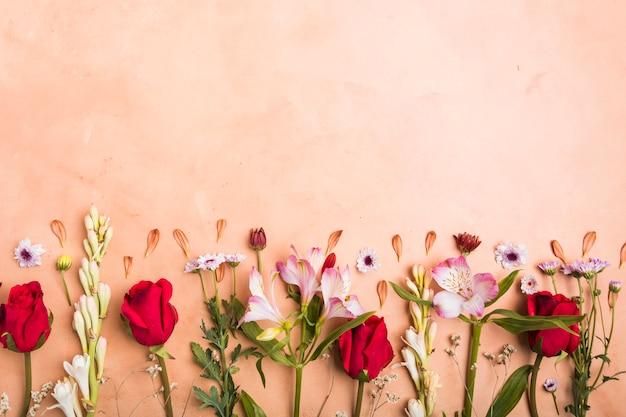 Вид сверху на ассортимент разноцветных весенних цветов