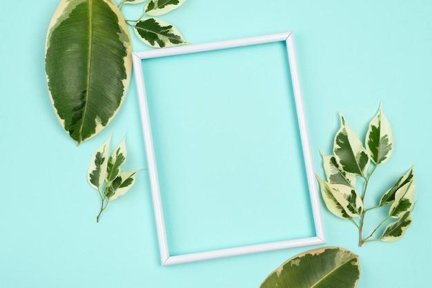 다양 한 식물 잎 프레임의 상위 뷰