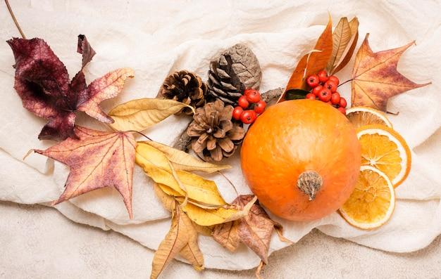 柑橘類と葉の秋のアレンジメントのトップビュー