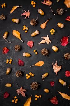 소나무 콘과 도토리 가을 요소의 상위 뷰