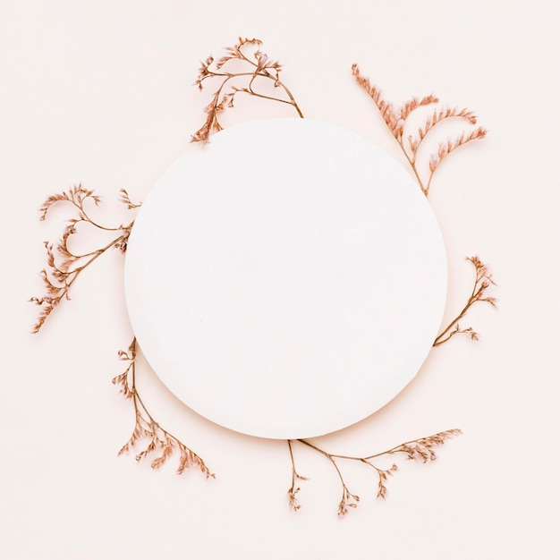종이 동그라미와 가을 식물의 상위 뷰