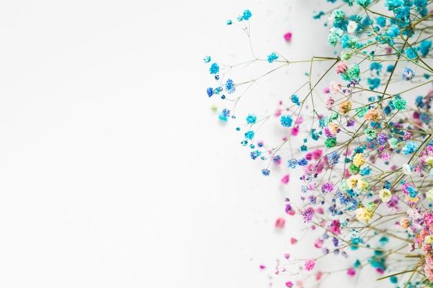 Вид сверху beautful цветочные концепции с копией пространства