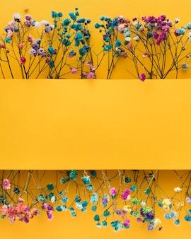 Вид сверху красивой цветочной концепции