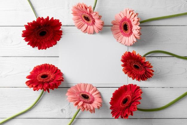 Вид сверху красивых цветов