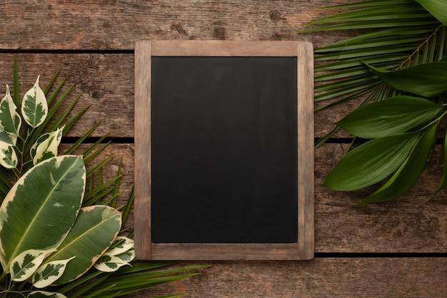 黒板と美しい植物の葉の上面図