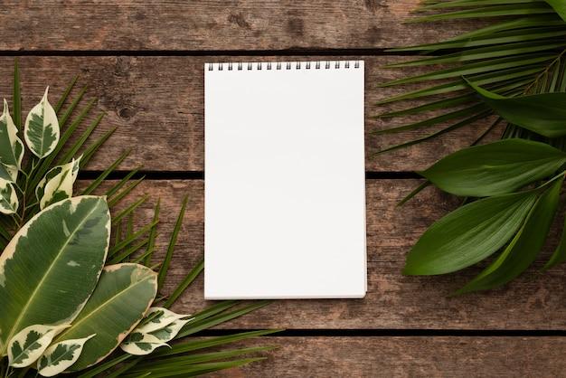 ノートブックと美しい植物の葉の上面図