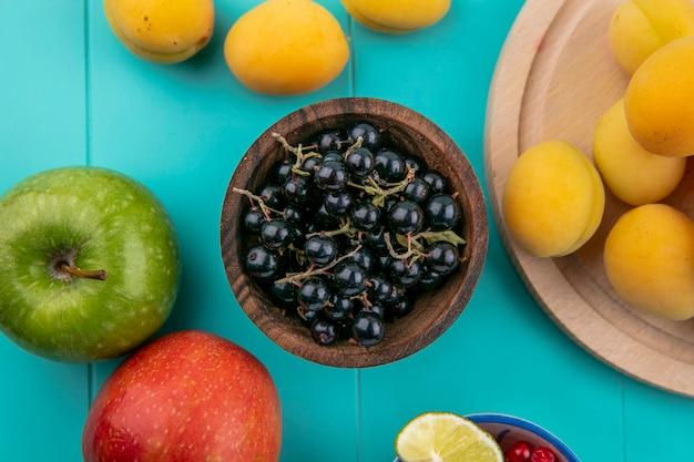 Вид сверху черной смородины в миске с абрикосами и яблоками на синей поверхности