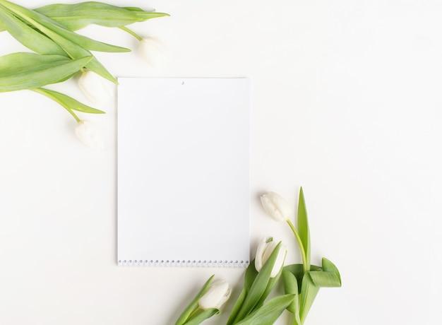 白い背景の上の白いチューリップと空白のカレンダーの上面図。