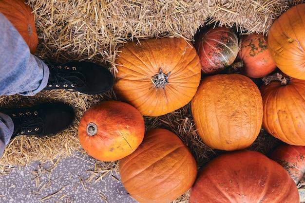 Вид сверху ботинка на фермерском рынке на сене. ноги крупным планом в джинсах и обуви в декоре праздника благодарения и хэллоуина.