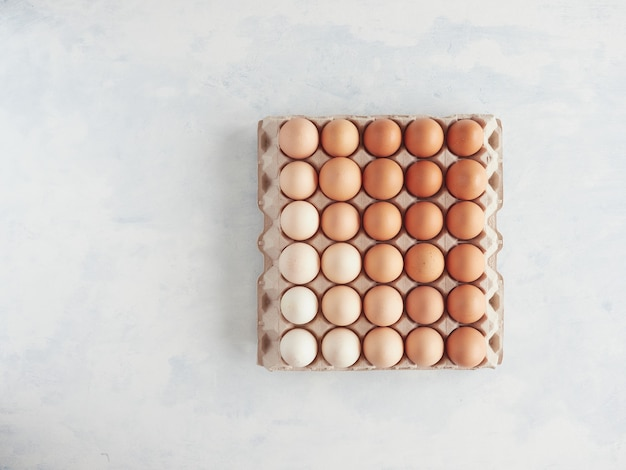 段ボール包装トレイのグラデーションカラーの茶色の卵の上面図