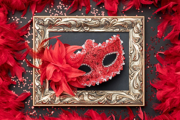 Вид сверху карнавальной маски с перьями и рамкой