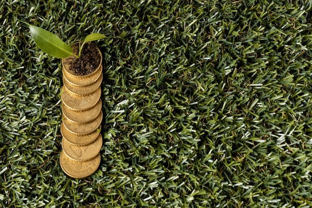 Вид сверху монет на траве с растением и копией пространства